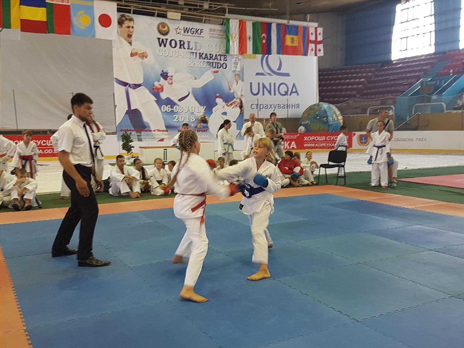 Кубок мира по годзю-рю каратэ и кобудо прошел в Одессе