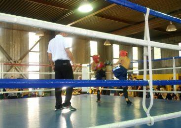 Открытый чемпионат Одесской области по кикбоксингу WAKO