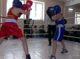Турнир по боксу «Дети – наше будущее!» прошел в Одессе